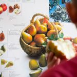 Eberl & CO KG - Apfelsaft von nebenan®
